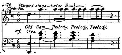 sparrow song