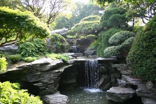Japanese Serenity Garden